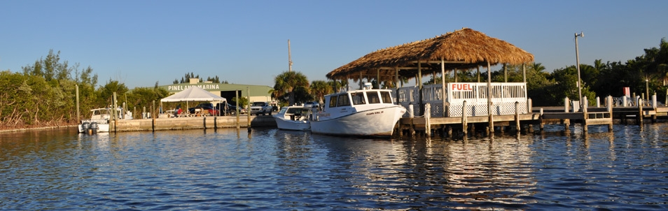 Click the image above to tour the Marina!
